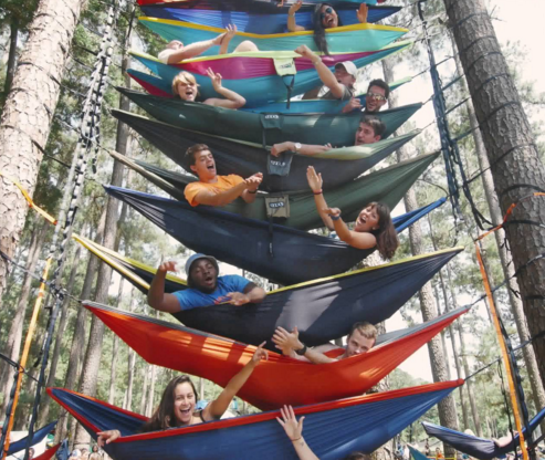 Hammock Ladder